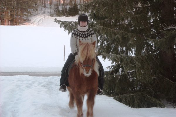Christmas ride Horses of Taiga