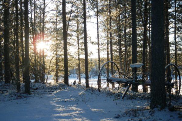 Kortudden winter