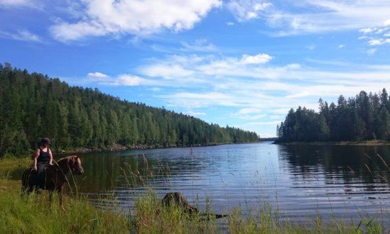 Skellefteälv river wilderness