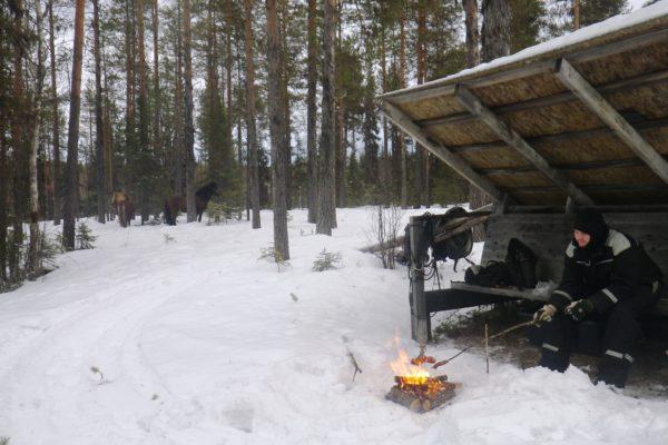 lunch break winter