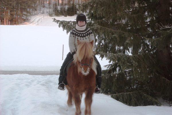 Christmas ride Horses of Taiga