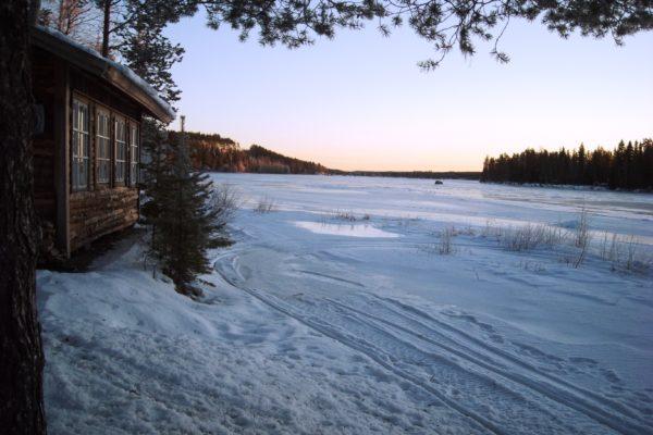 Skellefteälv winter