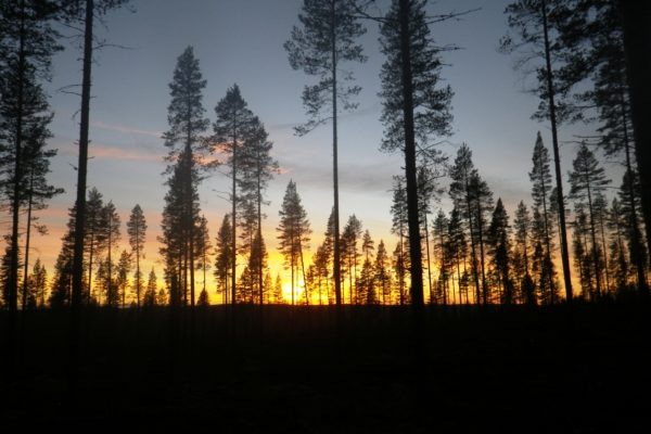 Sunset at Horses of Taiga