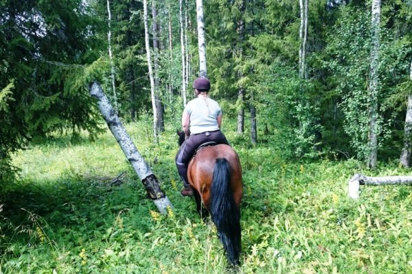 Wilderness riding