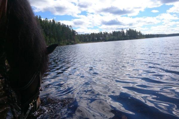 Yrpa river