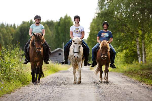 Horse riding with friends in Swedish Lapland